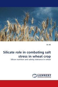 Silicate role in combating salt stress in wheat crop