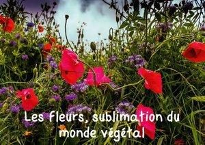 Les fleurs, sublimation du monde végétal (Livre poster DIN A4 h
