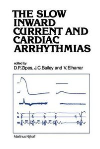 The Slow Inward Current and Cardiac Arrhythmias