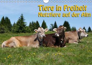 Tiere in Freiheit - Nutztiere auf der Alm (Wandkalender 2019 DIN