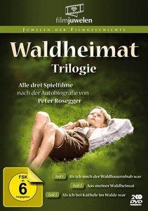 Waldheimat Trilogie-Als ich