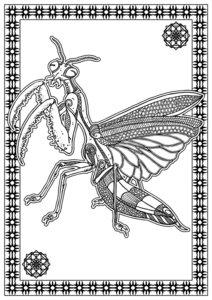 Bestiarium - A Dark Colouring Book