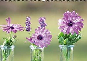 Petites Fleurs (PosterbuchDIN A2 quer)