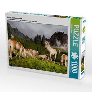 Junge Haflingerherde 1000 Teile Puzzle quer