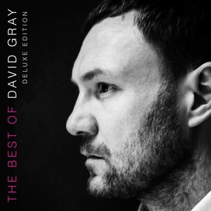 The Best Of David Gray (Deluxe Edit.-2CD Bookpack)