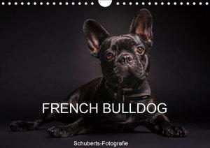 French Bulldog (Wandkalender 2019 DIN A4 quer)