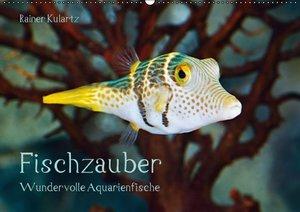 Fischzauber - Wundervolle Aquarienfische (Wandkalender 2016 DIN