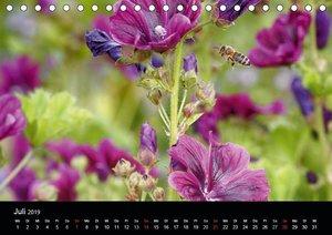 Arbeitsbienen (Tischkalender 2019 DIN A5 quer)