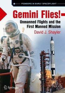 Gemini Flies