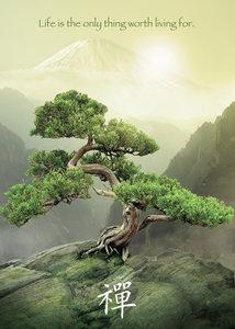 Zen Baum. Puzzle 1000 Teile
