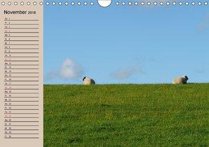 Schafe zählen leicht gemacht!