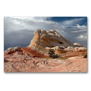 Premium Textil-Leinwand 90 cm x 60 cm quer Lollipop Rock, White