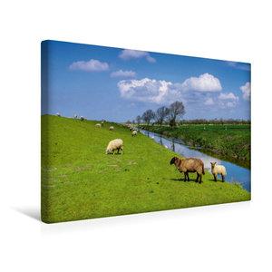 Premium Textil-Leinwand 45 cm x 30 cm quer Deichschafe