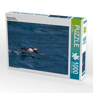 Wasserstart 1000 Teile Puzzle quer
