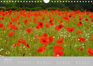 Colours of the Countryside (Wall Calendar 2020 DIN A4 Landscape)