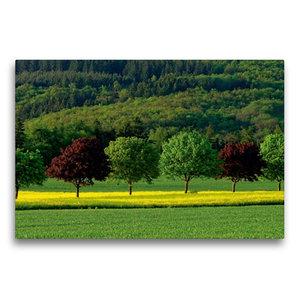 Premium Textil-Leinwand 75 cm x 50 cm quer Sommerfarben im Idste