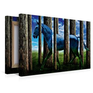 Premium Textil-Leinwand 45 cm x 30 cm quer Das Pferd