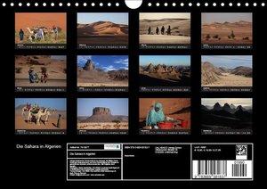 Die Sahara in Algerien (Wandkalender 2019 DIN A4 quer)
