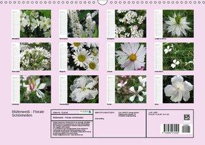 Blütenweiß - Florale Schönheiten