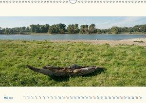 Am Rhein - Urdenbacher Kämpe (Wandkalender 2019 DIN A3 quer)