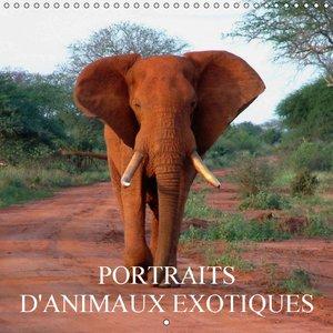 Portraits d\'animaux exotiques (Calendrier mural 2015 300 × 300