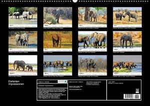 Elefanten Impressionen (Wandkalender 2020 DIN A2 quer)