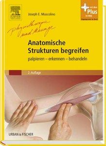 Anatomische Strukturen begreifen