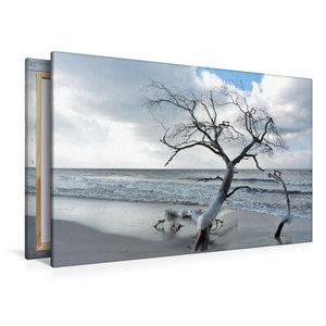 Premium Textil-Leinwand 120 cm x 80 cm quer Vereist und sehr dek