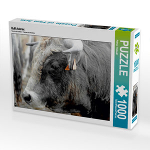 CALVENDO Puzzle Bull Aubrac 1000 Teile Lege-Größe 64 x 48 cm Fot