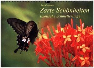 Zarte Schönheiten Exotische Schmetterlinge / CH-Version