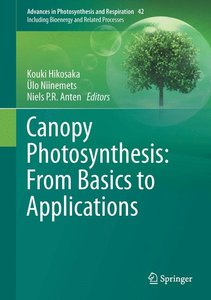 Canopy Photosynthesis: From Basics to Applications