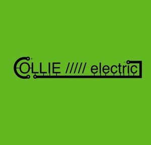Collie/////electric