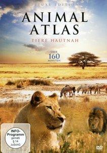 Animal Atlas-Tiere Hautnah