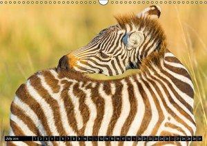 Masai Mara 2015 (Wall Calendar 2015 DIN A3 Landscape)
