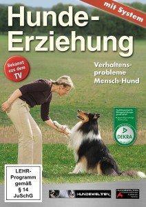 Hundeerziehung-Verhaltensprobleme Mensch-Hund