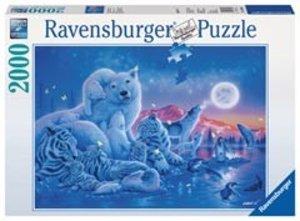 Ravensburger 16606 - Polartiere im Mondschein, Puzzle, 2000 Teil