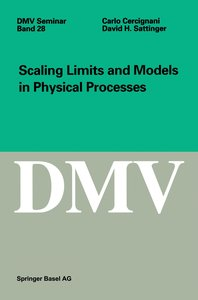 Scaling Limits and Models in Physical Processes