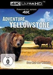 Adventure Yellowstone (UHD)