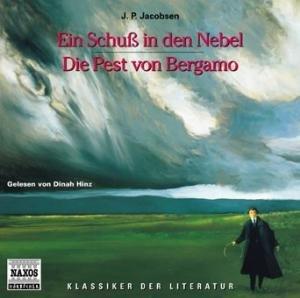 Schuß I.D.Nebel/Pest V.Berg