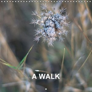 A WALK (Wall Calendar 2015 300 × 300 mm Square)