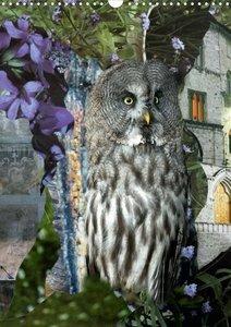 Pfeifer, Y: Wise Owls (Posterbuch DIN A4 hoch)
