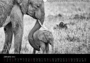 Elephants Black & White (Wall Calendar 2015 DIN A3 Landscape)