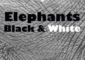 Elephants Black & White (Wall Calendar 2015 DIN A3 Landscape)
