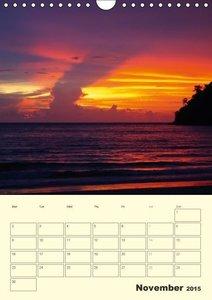 Schumann, B: Colours by the Sea / UK-Version / Organizer