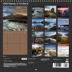 Wild Beauty of Scotland (Wall Calendar 2015 300 × 300 mm Square)