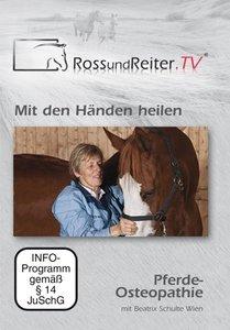 Mit den Händen heilen - Pferde-Osteopathie mit Beatrix Schulte W
