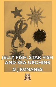 Jelly Fish, Star Fish and Sea Urchins