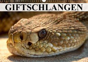 Giftschlangen (Wandkalender 2016 DIN A3 quer)