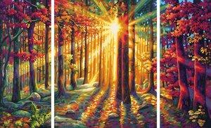 Schipper Malen nach Zahlen - Herbstwald (Triptychon)