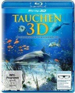 Tauchen 3D-Faszinierende Unterwasserwelten
